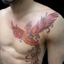 Tatuaje Ave Fenix Fuego