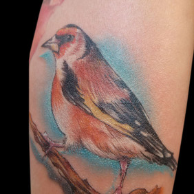 Tatuaje Gorrion
