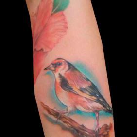 Tatuaje Pàjaro