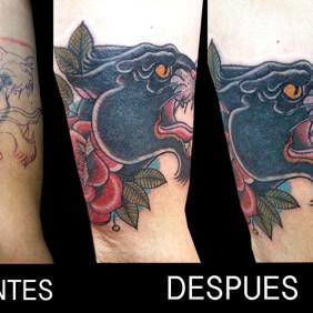 Tatuaje Cover Pantera