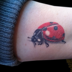 Tatuaje Mariquita