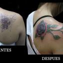 Tatuaje Cover con Rosas