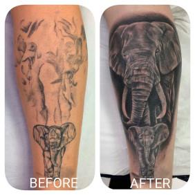 Tatuaje Coverup Elefante